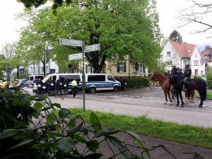 Polizeipferde
